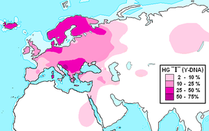 y chromosome haplogroup i genetics urantia