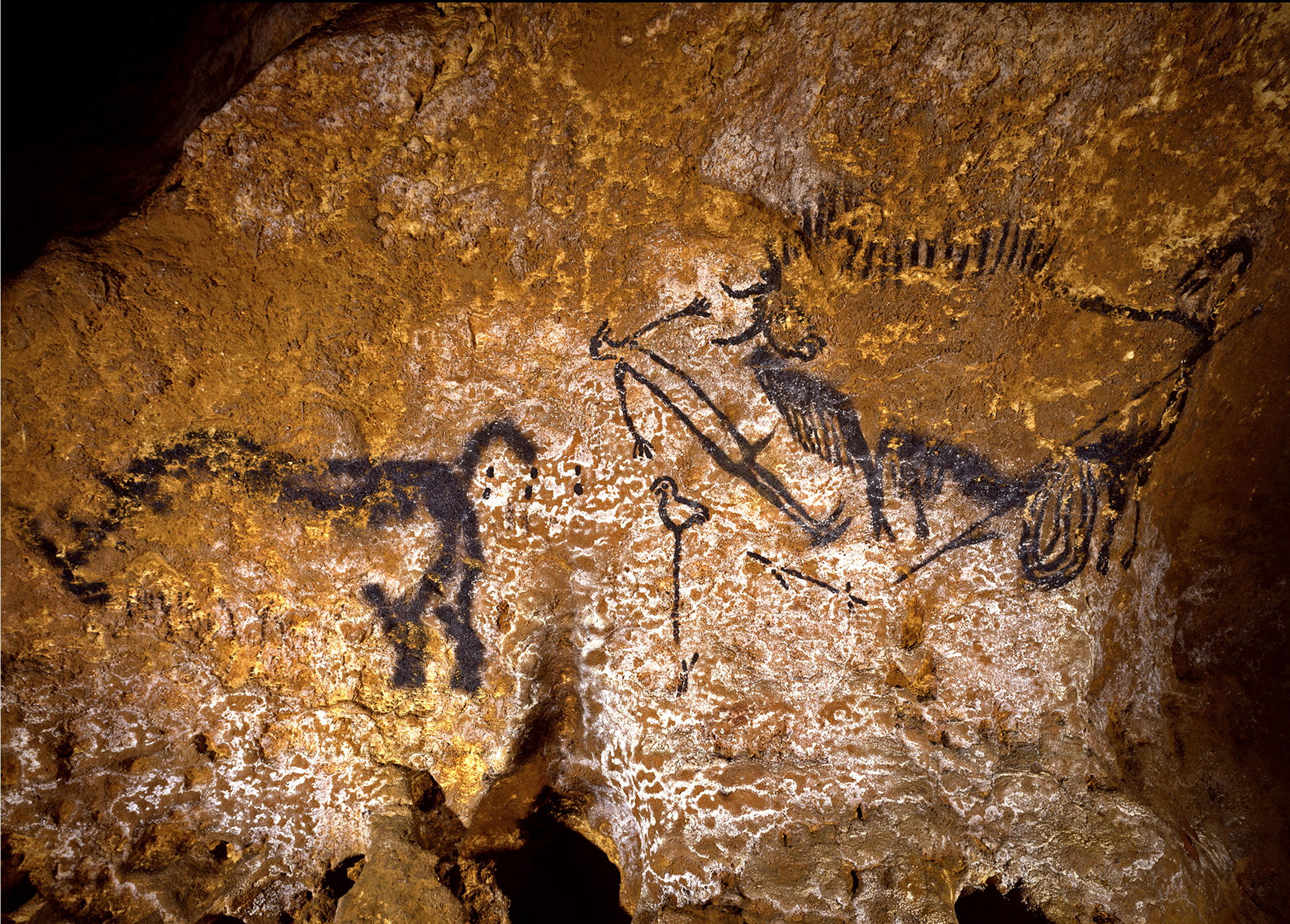 Lascaux - The Shaft of the Dead Man
